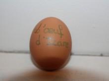 L'œuf d'Icare