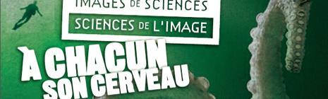 Du 14 au 30 nov en région : 38 projections et débats sur le thème « À chacun son cerveau »