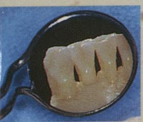 Les Cahiers d'odontologie médico-légale