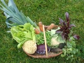 légumes d'hiver ©ACEVE
