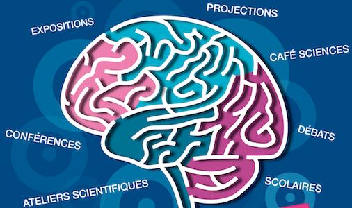 Semaine du cerveau 2013