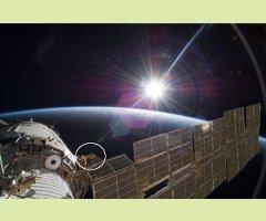 La vie sur Mars : leçons de la vie primitive terrestre