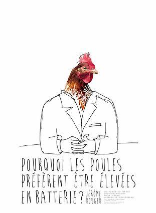 Pourquoi les poules préfèrent être élevées en batterie ?