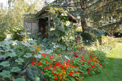 Jardins de bien-être, jardins de soins