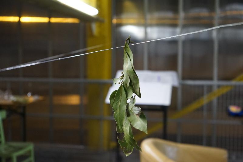 Projet anthropocène – Laboratoire ouvert