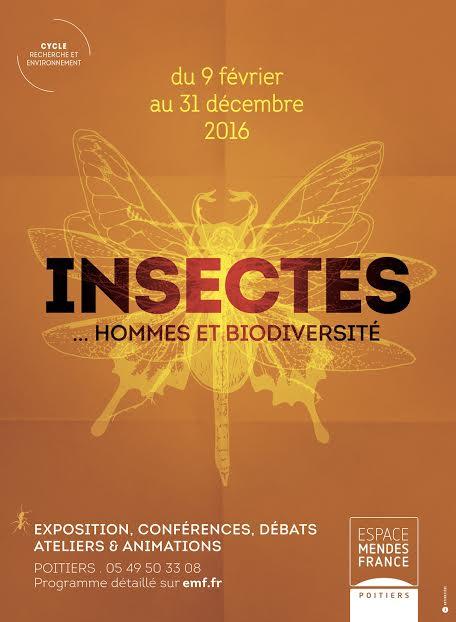 Exposition Insectes pendant les vacances de février