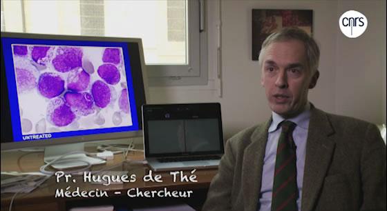 Guérir une leucémie avec de l'arsenic ?