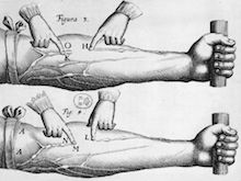 Histoires et légendes du sang ou pourquoi le sang coule t-il ?
