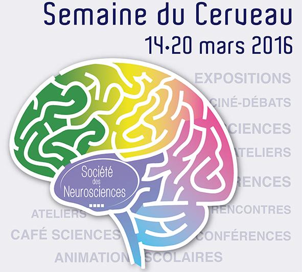 Semaine du cerveau // du 14 au 20 mars 2016
