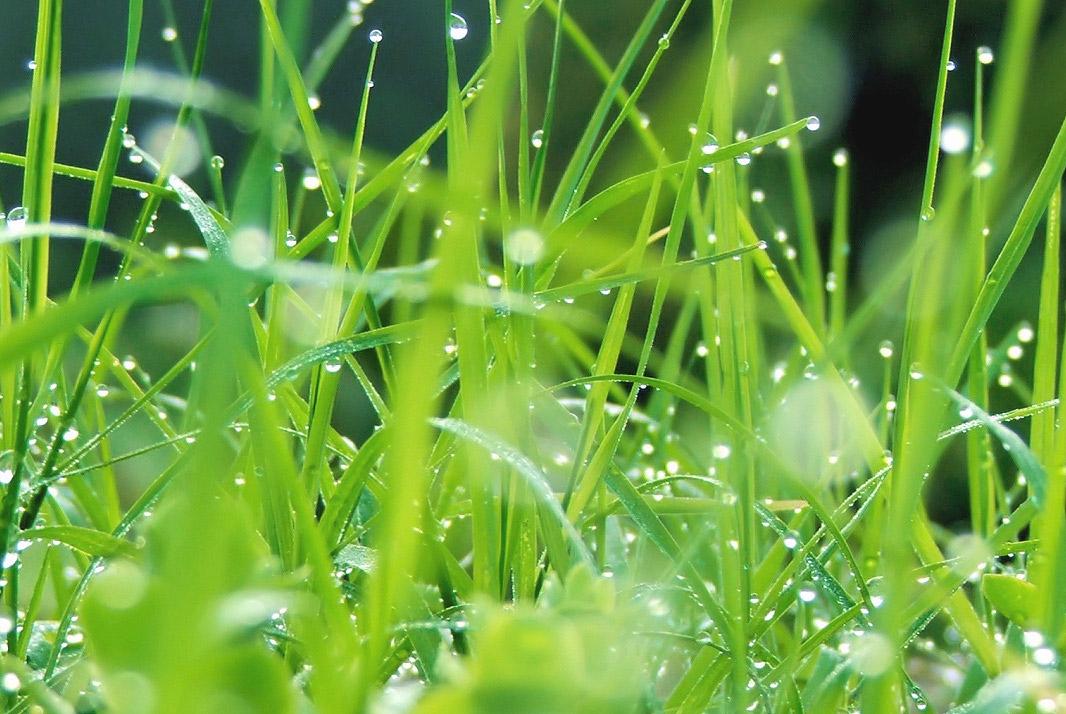 Qu'est-ce que la chimie verte ?