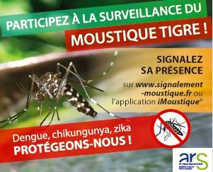 Participez à la surveillance du moustique tigre!