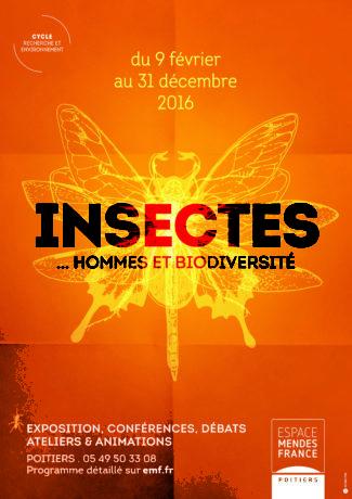 Affiche Insectes (min)