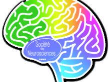 Semaine du cerveau – Du 13 au 19 mars 2017