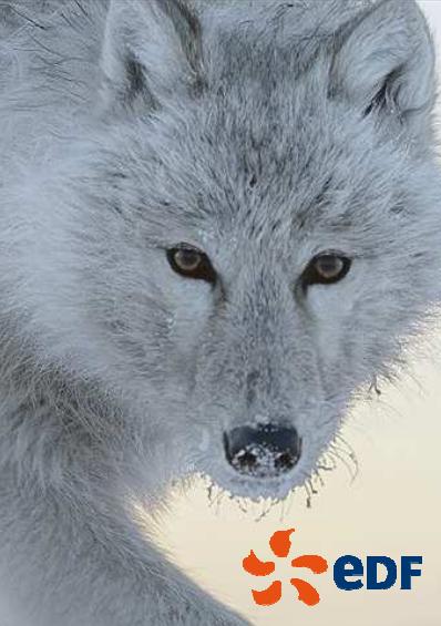9e rencontres culturelles du cinéma animalier